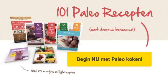 101paleorecepten-banner