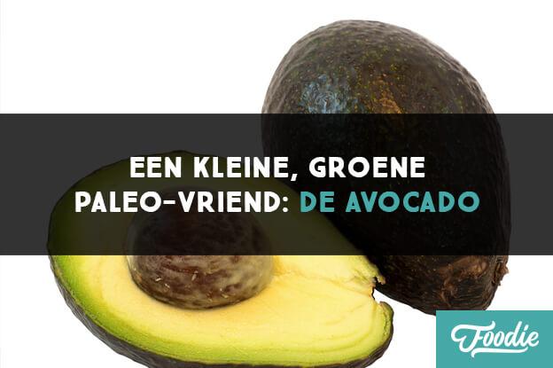 Een kleine groene Paleo vriend-de avocado
