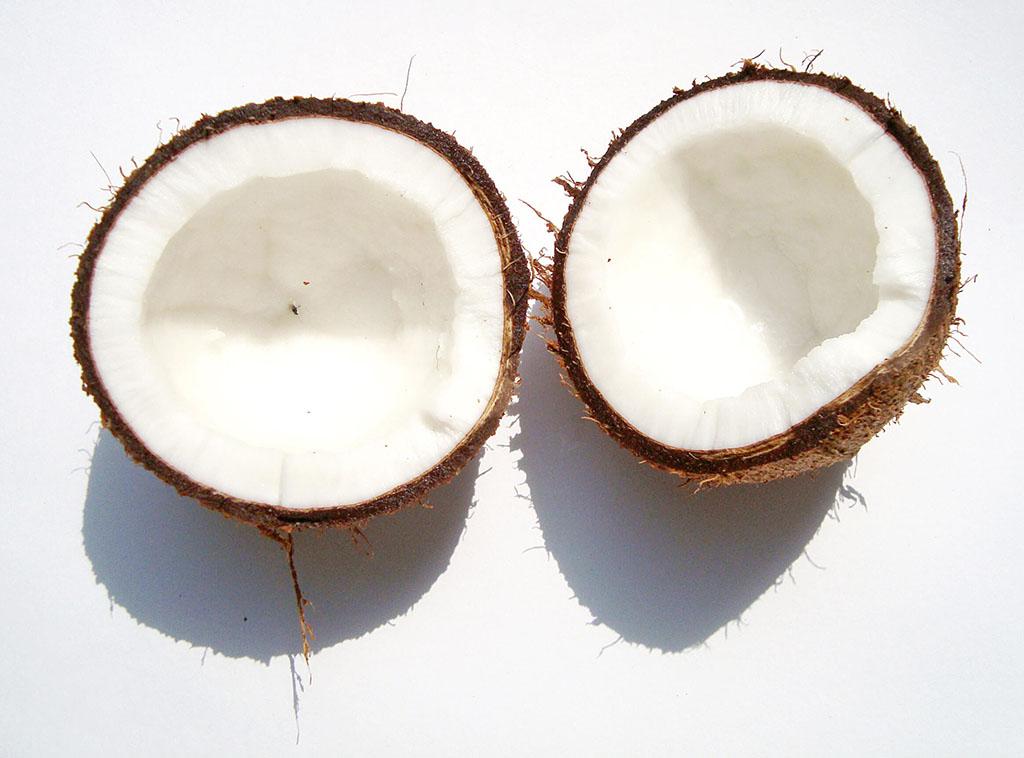 coconut_z1ftkio_-1